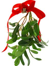 Mistletoe Kissing Kiss Holly Norse