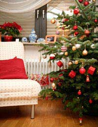 Christmas Decorations And Themes For The Home